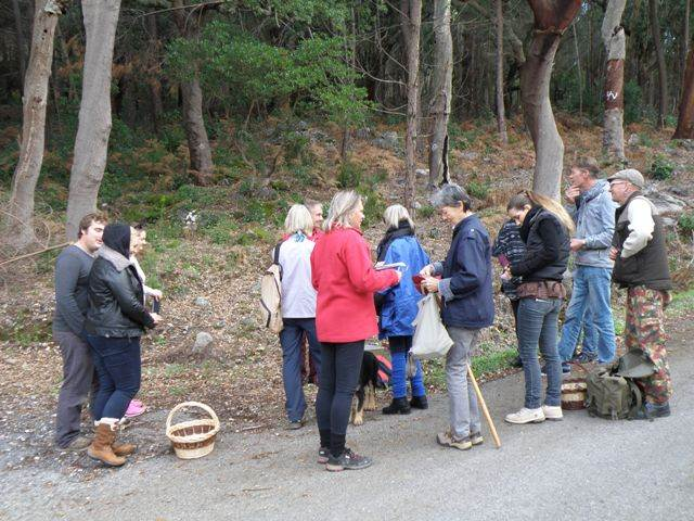 Fungi expedition in the Algarve