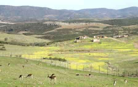 The unforgettable scenery of the Guadiana region